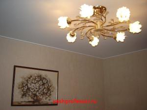 натяжной потолок в гостиной 3